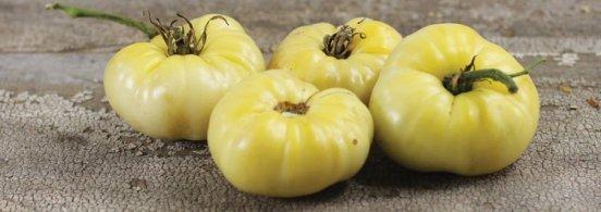 White Wonder Beefsteak - This very mild, sweet tasting variety has skin and flesh that are white when ripe!