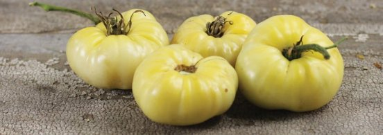 White Wonder Beefsteak - This very mild, sweet tasting variety has skin and flesh that are white when ripe!